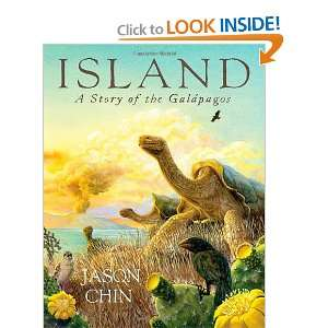 Island: A Story of the Galápagos (9781596437166): Jason Chin: Books