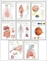 Human Anatomy Chart Pack, (1932922857), Various, Textbooks   Barnes