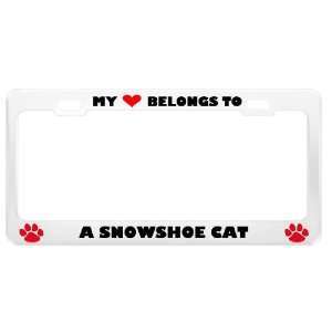 Snowshoe Cat Pet White Metal License Plate Frame Tag Holder