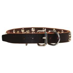 Dean & Tyler Leather Dog Collar Bumps & Bits   High