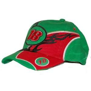 #18 BOBBY LEBONTE NASCAR TEAM COLOR HAT: Everything Else