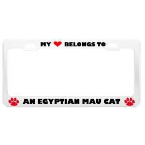 An Egyptian Mau Cat Pet White Metal License Plate Frame