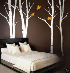 Wall Art Vinyl Decal Terrific Forest Birch Trees