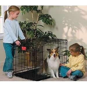 Life Stages Double Door Dog Crate 30L X 21W X 24H Pet
