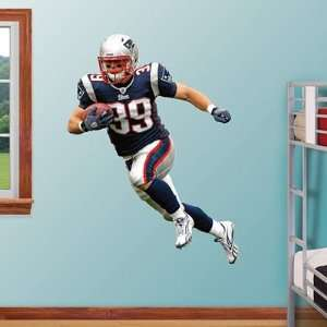 Danny Woodhead Fathead Wall Graphic   NFL Sports