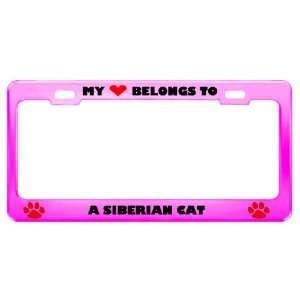 Siberian Cat Pet Pink Metal License Plate Frame Tag Holder