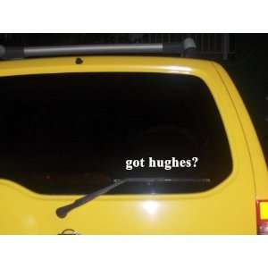 got hughes? Funny decal sticker Brand New Everything