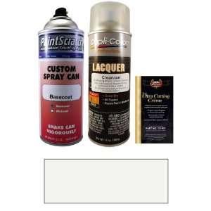 12.5 Oz. Mercury Silver Metallic Spray Can Paint Kit for 2012