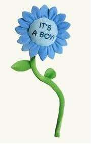 RUSS BERRIE ITS A BOY FLOWER BABY NEWBORN GIFT NEW