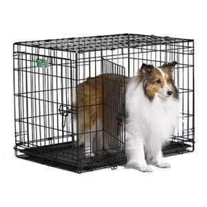 iCrate Double Door Dog Crate, 30 x 19 x 21 Pet