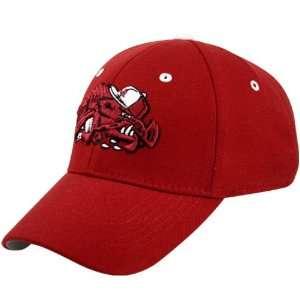 Top of the World Arkansas Razorbacks Cardinal Playaz 1Fit Hat