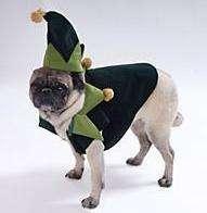 Ella the Elf Suit Dog Cat Costume Clothes XSmall XS