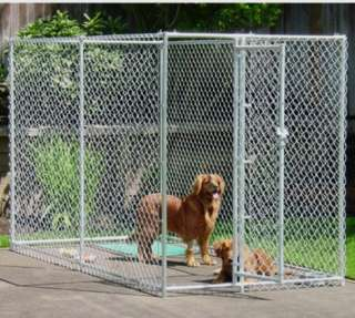 Chain Link Dog Kennel  X X